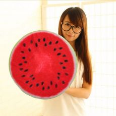 Watermelon Cushion Pillow